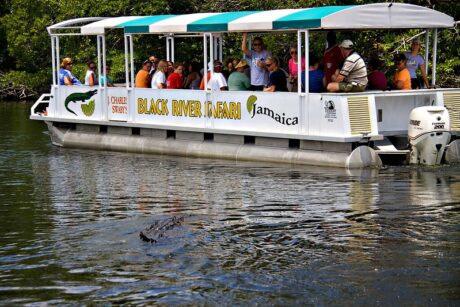 Black River Safari Experience